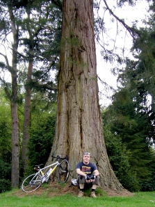 Me and the Redwood, Longleat Forest