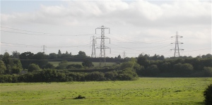 Pylons viewed from the road between Frome and Standerwick