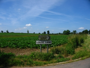 Louse Lane on the way to Punchard's Farm