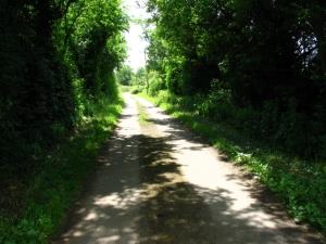 A favourite lane